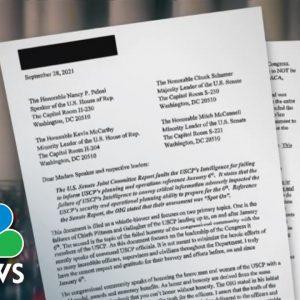 Capitol Police Whistleblower Blasts Senior Leaders For Jan. 6 'Failures'