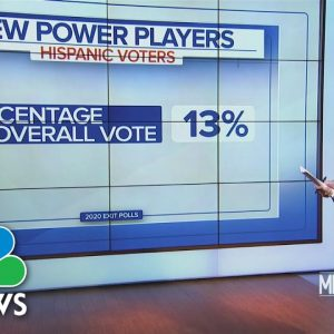 Hispanic Voters Now Key In Swing Counties Nationwide